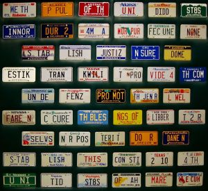 lic plate